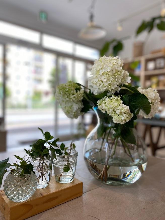 花瓶に挿して机に飾られたアナベル