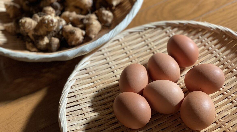 ざるの上に卵や野菜がのっている