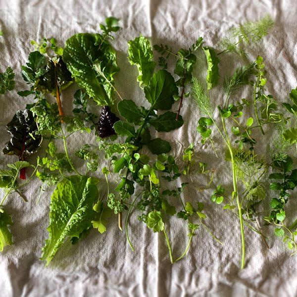 drying-salad-on-linen
